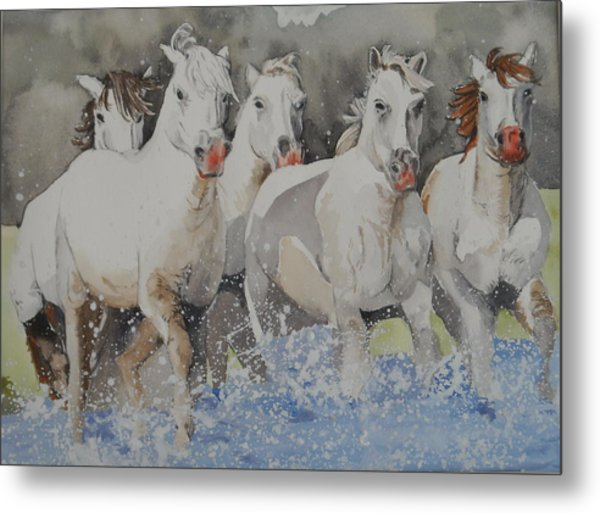Horses Thru Water Metal Print