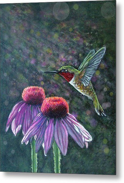 Hummingbird And Cone Flowers Metal Print by Diana Shively