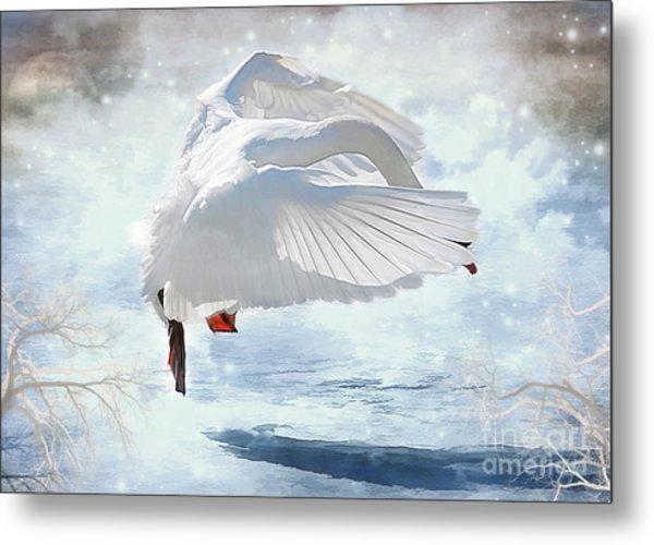 Swans Dance Of Spring Metal Print