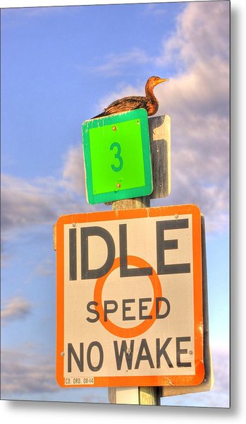 Idle Sitting Metal Print by Barry R Jones Jr