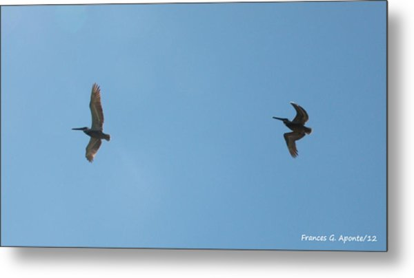 II Want To Be Free Metal Print by Frances G Aponte