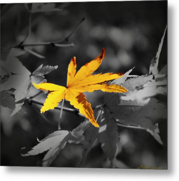 Illuminated Leaf Metal Print
