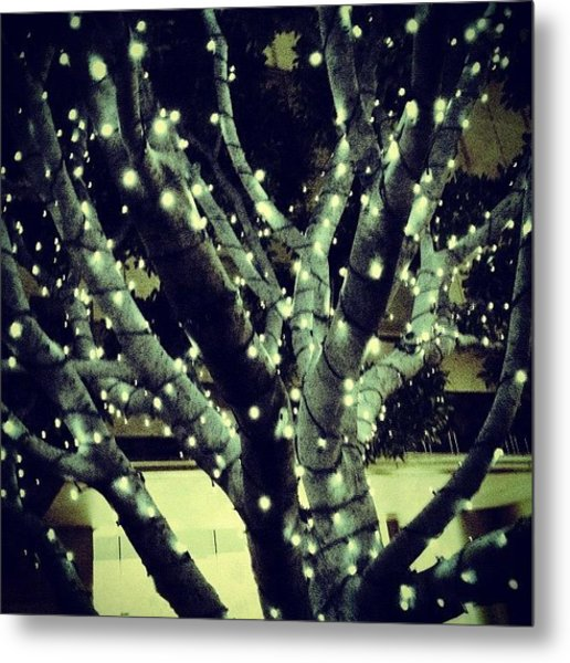 Image Created With #snapseed #tree Metal Print