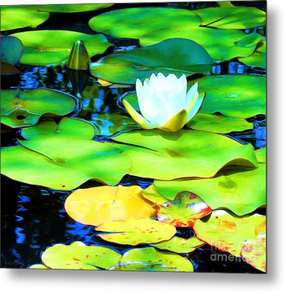 Impressions Of A White Water Lily Metal Print