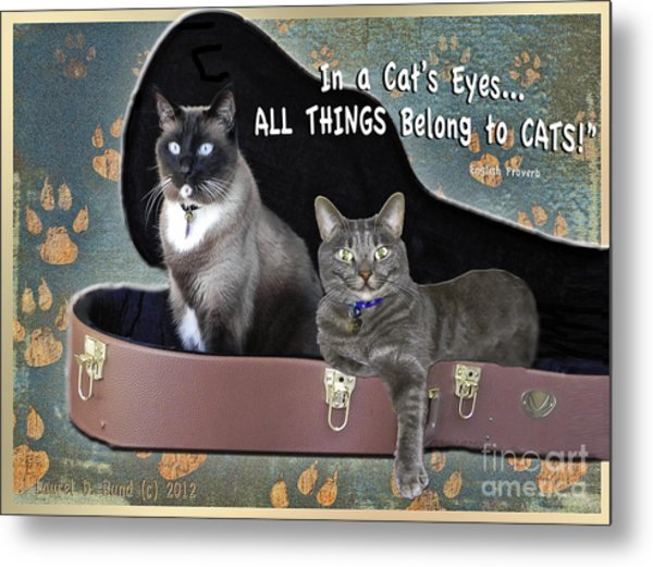 In A Cats Eyes Metal Print