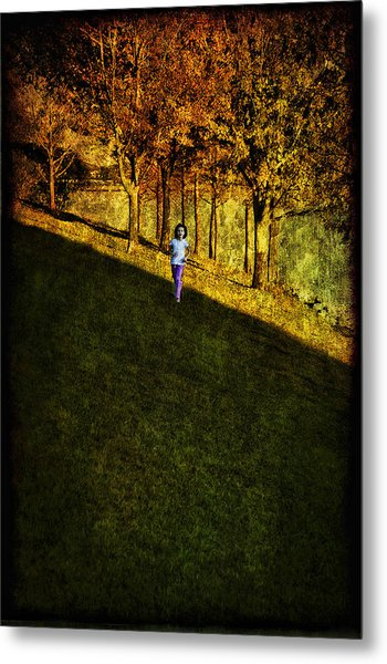 In Between Metal Print by Anna Yanev