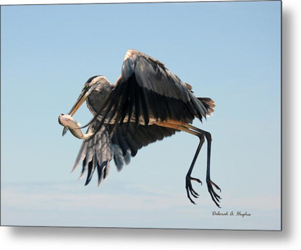 In Flight 3 Metal Print