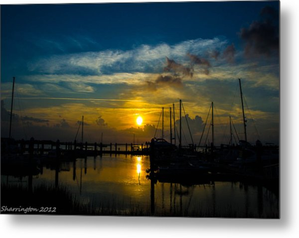 In For The  Night Metal Print