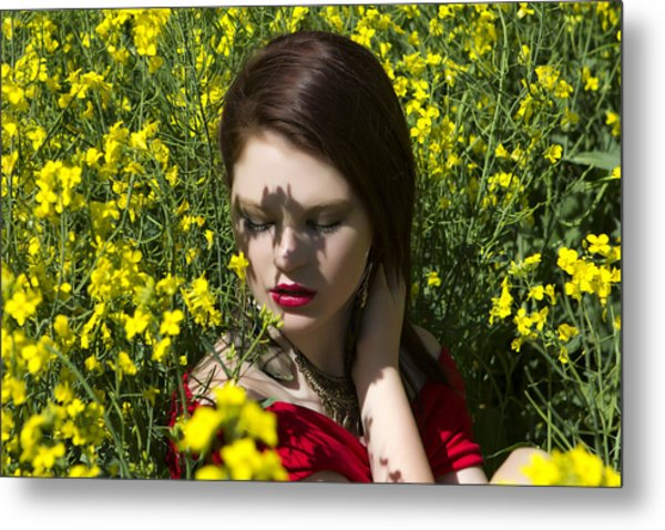 In The Canola Metal Print