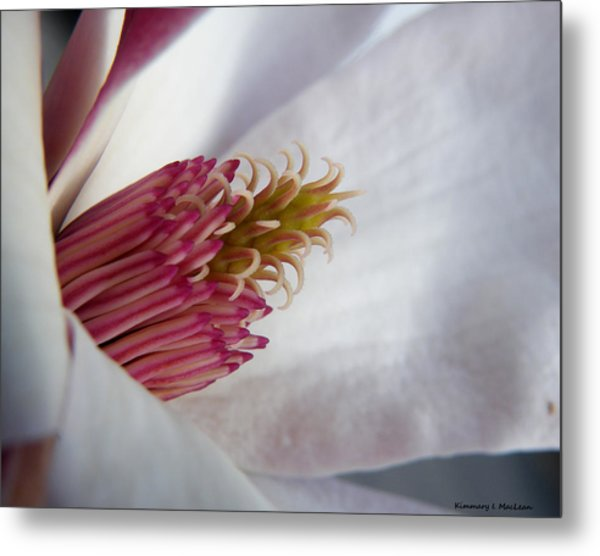 In The Middle Metal Print