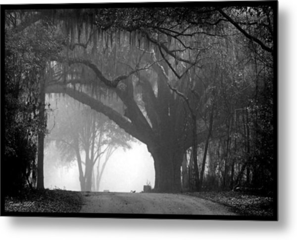 In To The Unknown Metal Print