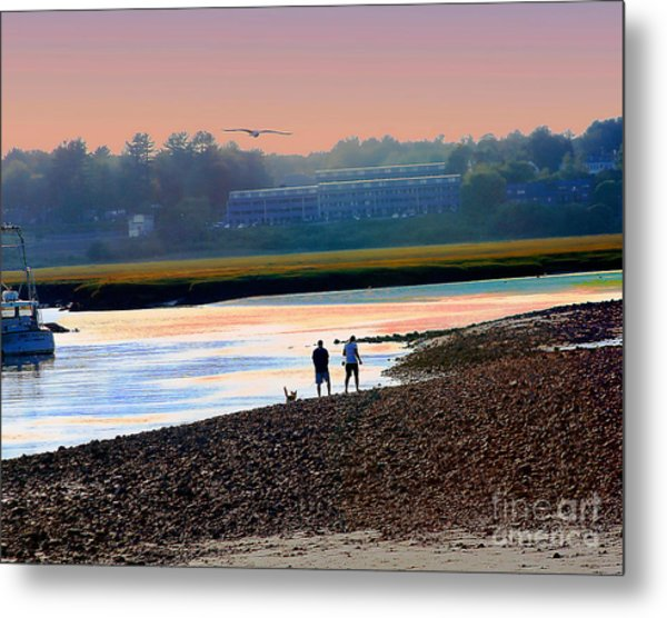 Incoming Gull From Dog Beach Series Metal Print