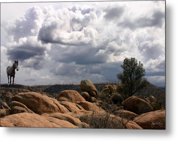 Indian Pony In The Dells Metal Print
