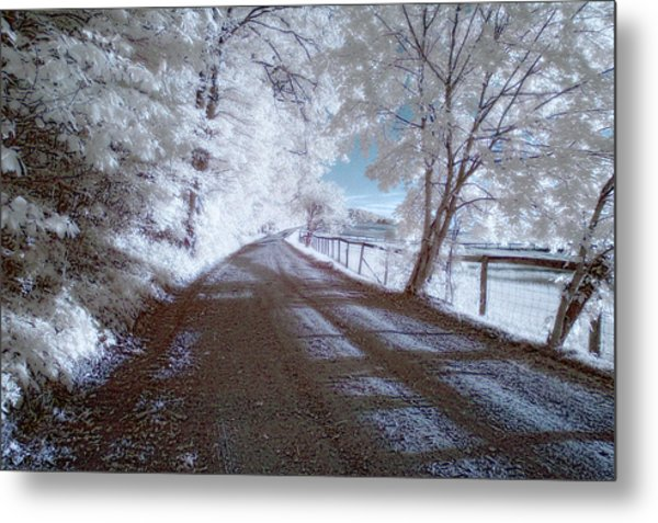 Infrared Snow In July Metal Print