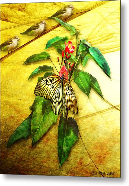 Insect - Butterfly - Sparrow - Happy Summer  Metal Print
