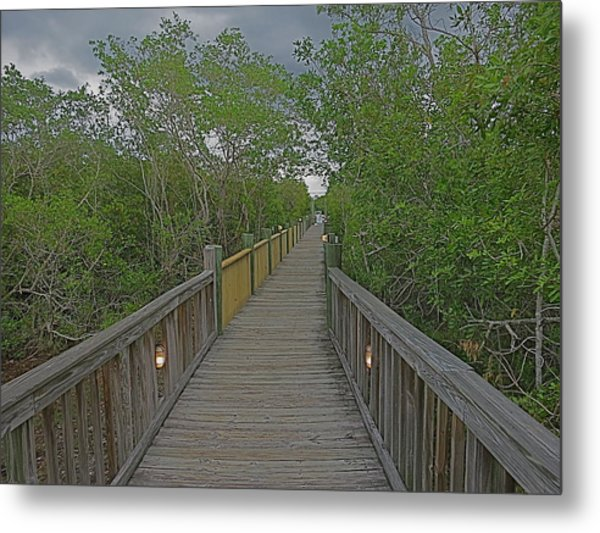 Into The Groves Metal Print