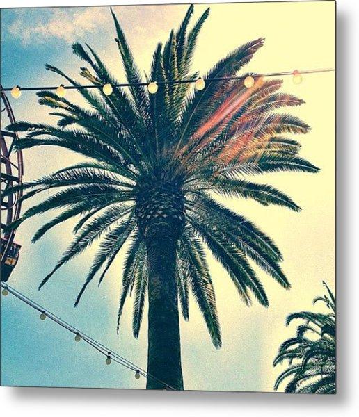 It's A Palm Tree. #la #losangelas Metal Print