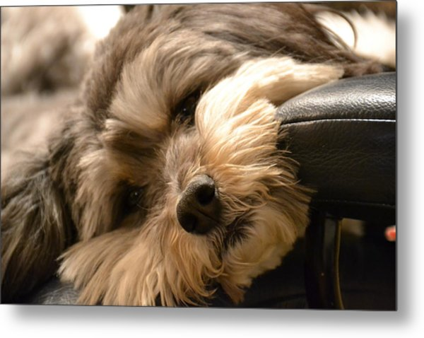 It's Been A Long Day Metal Print