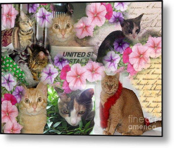 Itty Bitty Kitties Metal Print