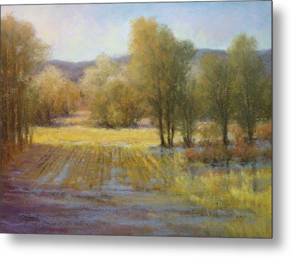 January Rains Metal Print by Paula Ann Ford