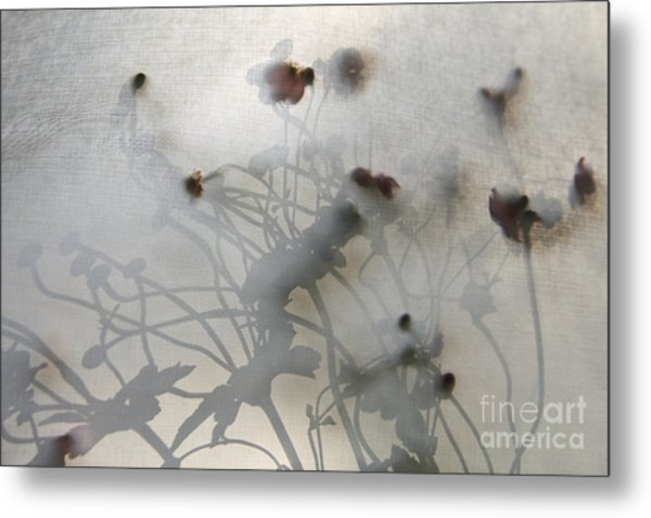 Japanese Anemones With Texture Metal Print by Ruby Hummersmith