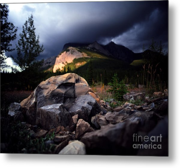 Jasper - Summer Storm Metal Print by Terry Elniski