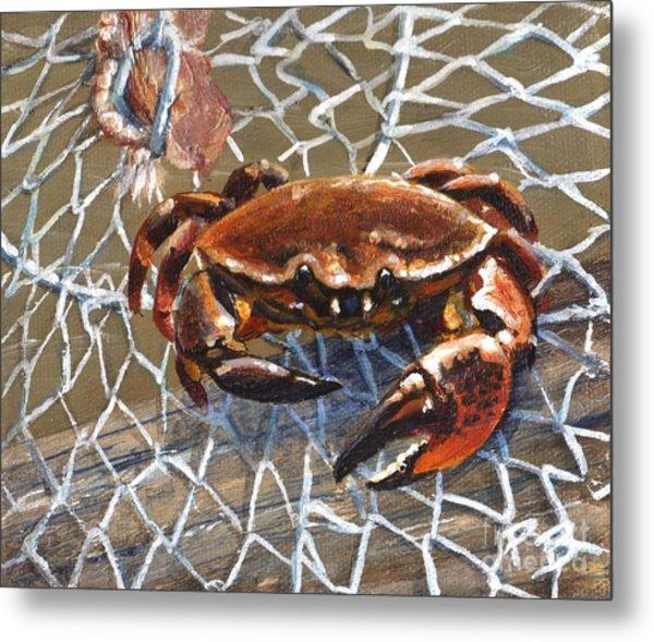 Jekyll Stone Crab Metal Print