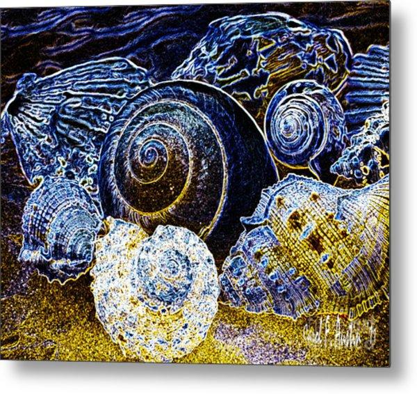 Abstract Seashell Art Metal Print
