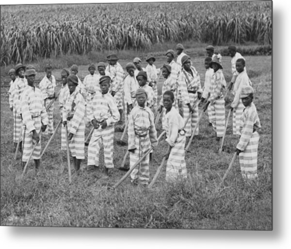 Juvenile Convicts At Work In The Fields Metal Print by Everett