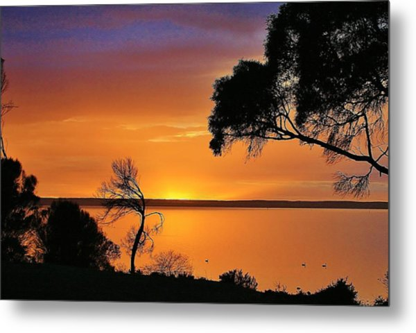 Kangaroo Island - Sunrise Metal Print by David Barringhaus
