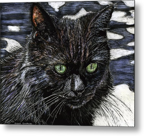 Katie The Cat Metal Print by Robert Goudreau