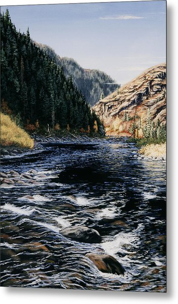 Kelly Creek Metal Print