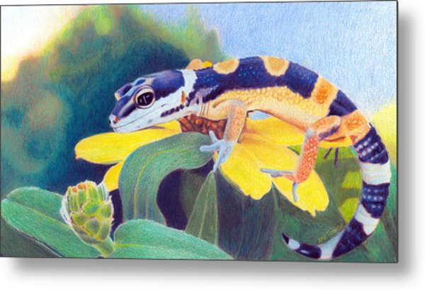 Kiiro The Gecko Metal Print