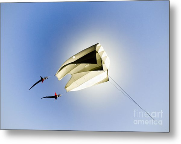 Kite And The Sun Metal Print by David Lade