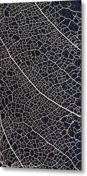Lace Leaf 5 Metal Print
