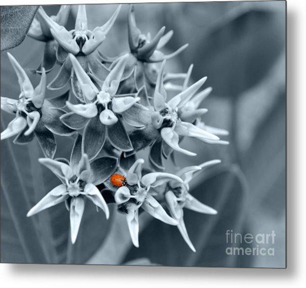 Ladybug Flower Metal Print