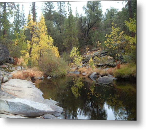 Lake In The Forest Metal Print