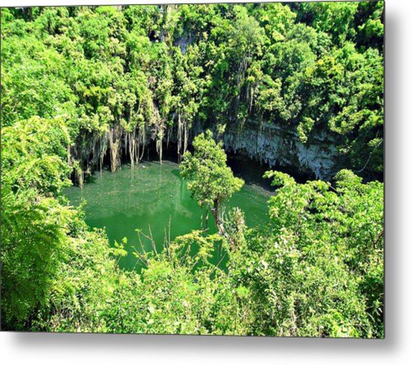 Lake In The Jungle Metal Print by Jenny Senra Pampin