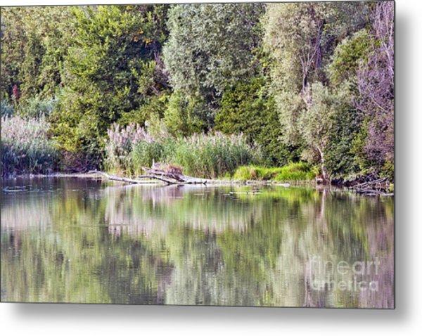 Lake Reflections Metal Print by Odon Czintos
