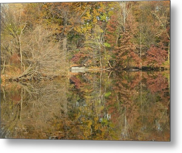 Lakeside Reflections Metal Print