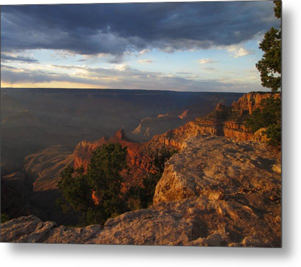 Last Rays At Grand Canyon Metal Print by Pasha Sourbeer