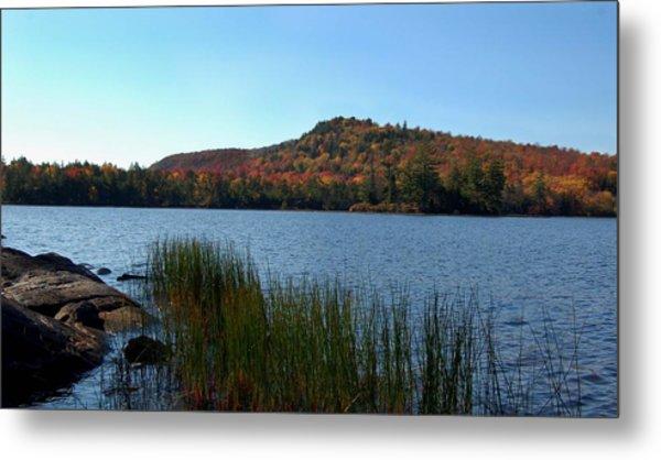 Late Fall On Lake Lila Metal Print