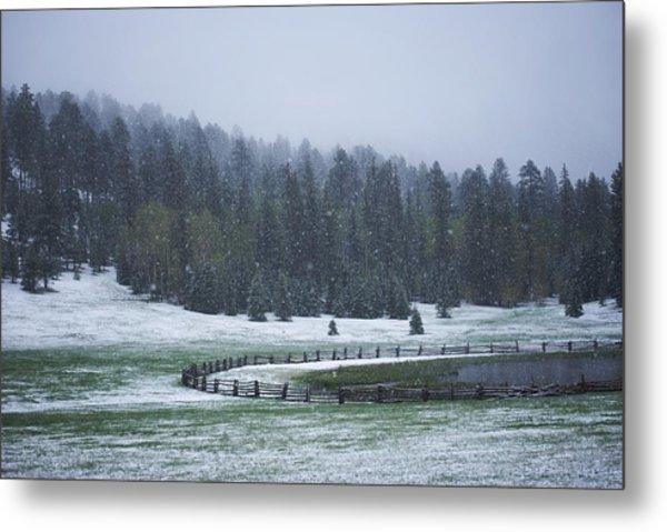 Late Season Snowstorm Metal Print by C Thomas Willard