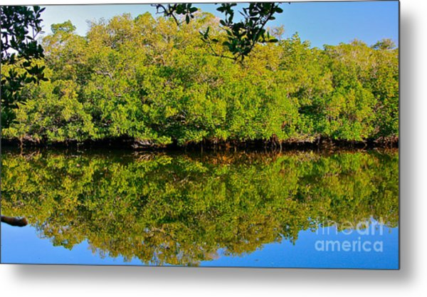 Lazy Reflections Metal Print