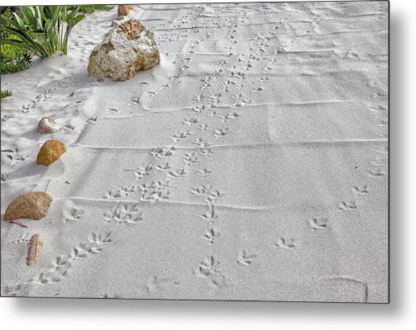 Leave Nothing But Your Footprints Metal Print
