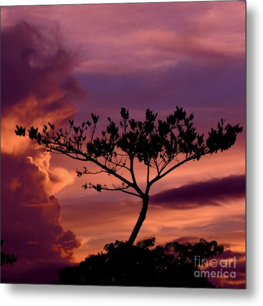Leeward Oahu Metal Print