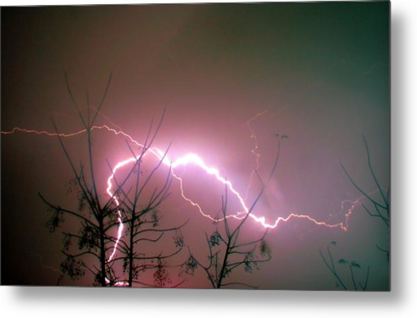 Lightning And Trees Metal Print