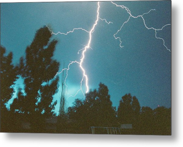Lightning Tree Metal Print by Trent Mallett