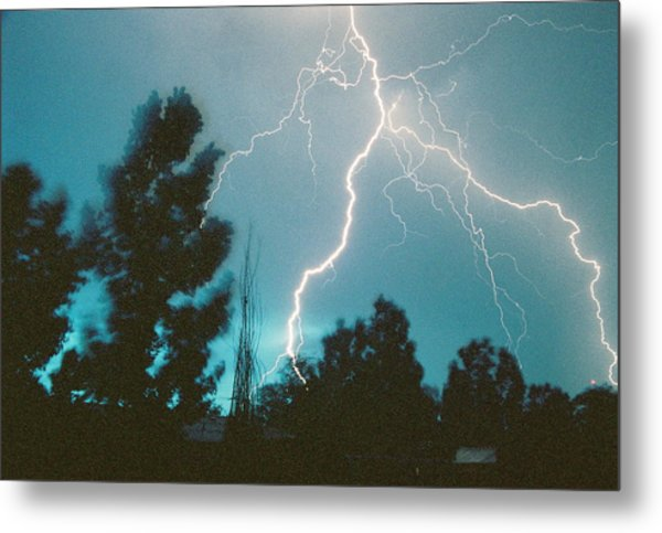 Lightning Trees Metal Print by Trent Mallett