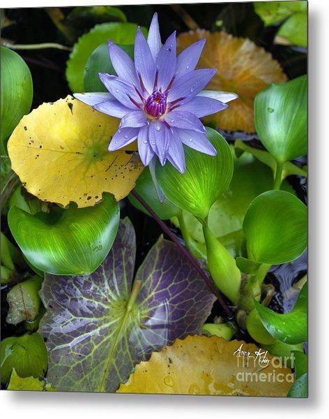 Lilies No. 3 Metal Print